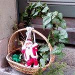 Конкурс 2018: Новогодний круиз на Silja Serenade, или мечты сбываются