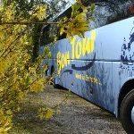 Диалоги об автобусных турах: Чем хороши автобусные туры?