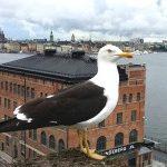 Туры по Балтике: новинки сезона