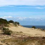 Куршская коса – море, дюны и леса